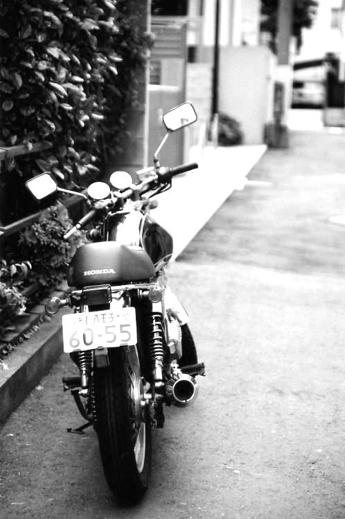 bike544.jpg