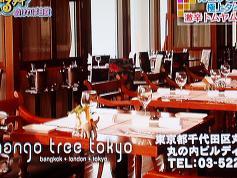 mango tree tokyo
