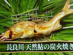 長良川天然鮎の炭火焼き