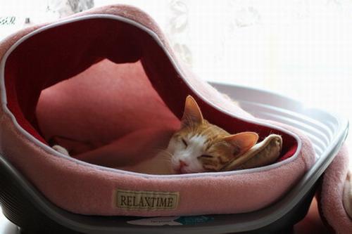 変則猫ベッド