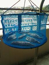 胡麻鯖干し物