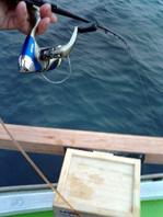 糸は船の下