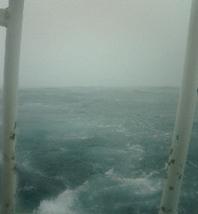 嵐が来た!