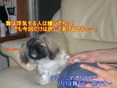CIMG1698.jpg