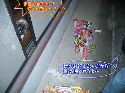 CIMG2005.jpg