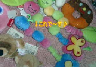 DVC000041.jpg