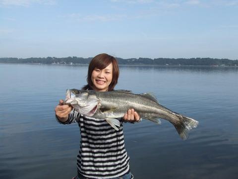 涸沼 シーバス 2007.10.12.2