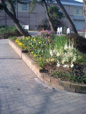 夙川公園の花壇と後ろは阪神電車の香櫨園駅