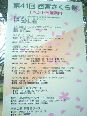 4/1は桜祭りです。