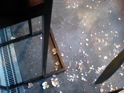 床に貝殻がたくさん落ちている。