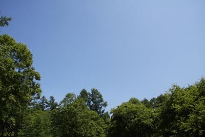 20110716-2.jpg