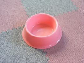 20070419-3.jpg