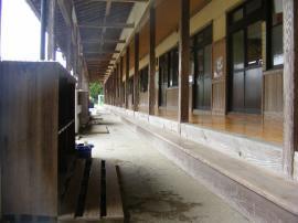 20070422-10.jpg