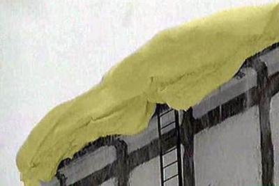 黄色の雪 MOSNEWS.COM