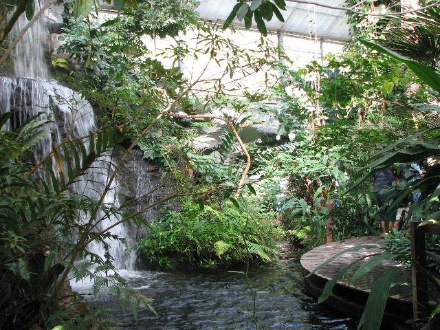 シリキット植物園の温室