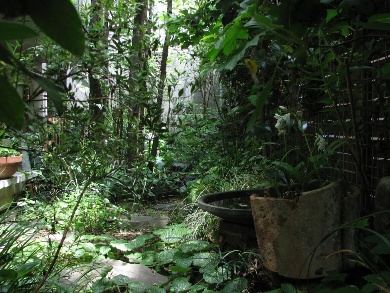 川部さんの庭#2 07_05