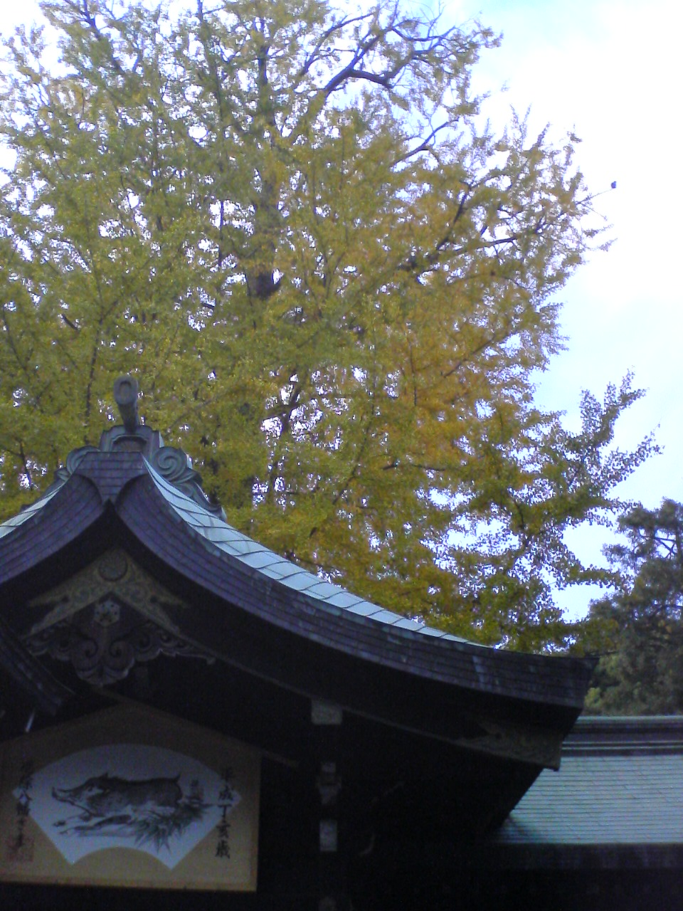 大宮八幡07_11