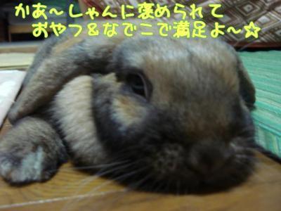 20070920024031.jpg