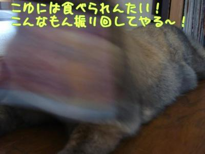 3nx.jpg