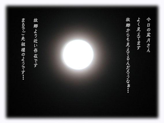 IMG_7731のコピー