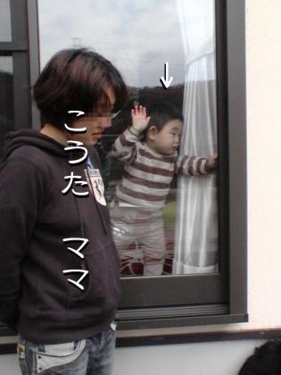 ぷっちとROMIとちょこっとまれすけ006 (1)