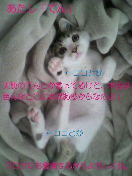20110727_5.jpg