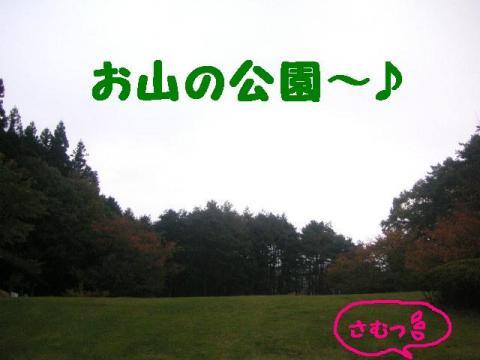 11-1-12.jpg
