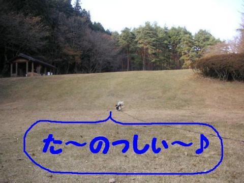 12-2-7.jpg