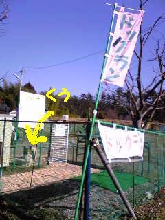 20070301232946.jpg