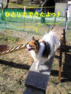 20070301235319.jpg