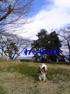 20070303225427.jpg