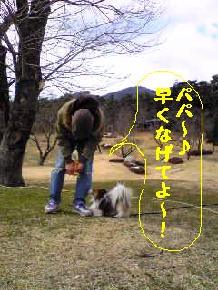 20070303230449.jpg