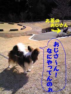 20070314001019.jpg