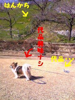 20070318005055.jpg