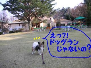 20070413014511.jpg