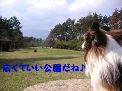 20070426190815.jpg