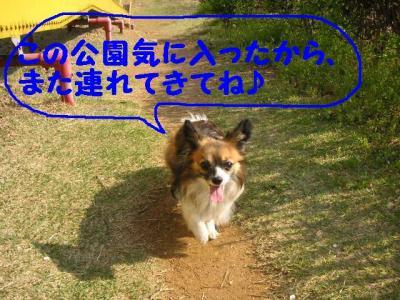 20070426230322.jpg