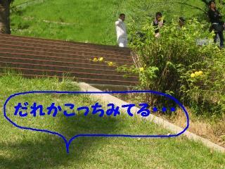 20070504214014.jpg