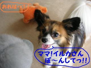 20070506211906.jpg