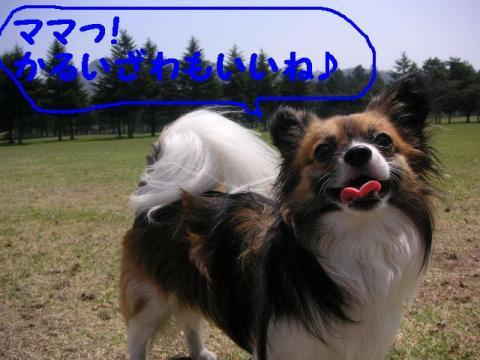 20070510190049.jpg
