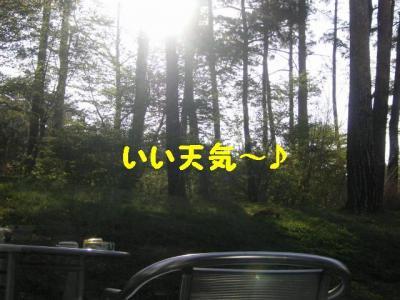 20070510202732.jpg