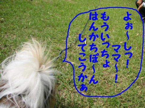 20070611221036.jpg