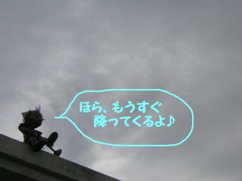 20070828153720.jpg
