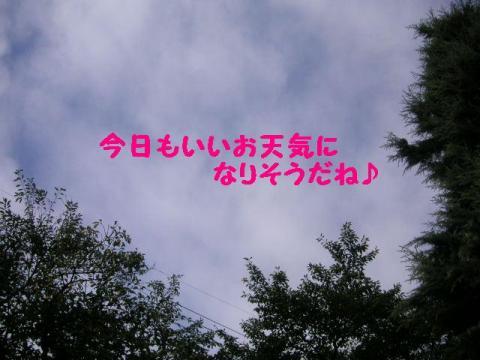 20070903155640.jpg