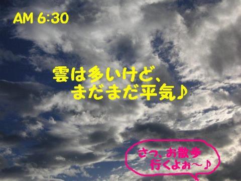 20070906155919.jpg
