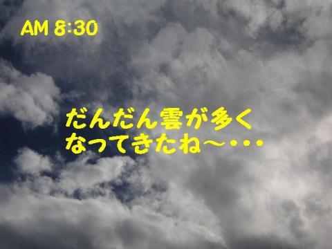 20070906160447.jpg