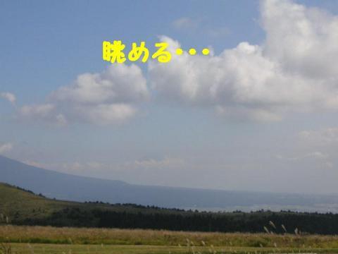 20071007204351.jpg