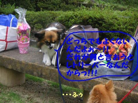 20071013210406.jpg