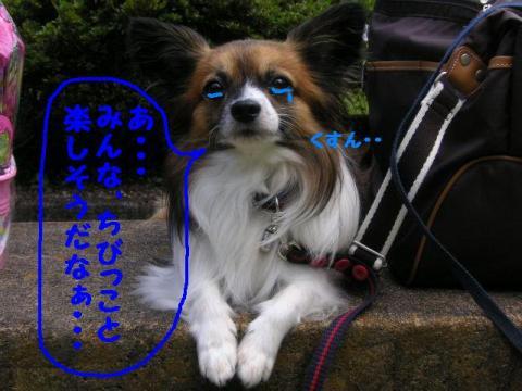 20071013215435.jpg