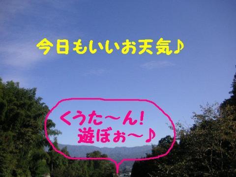 20071030210543.jpg
